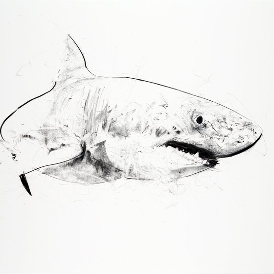 Great White III, 2013