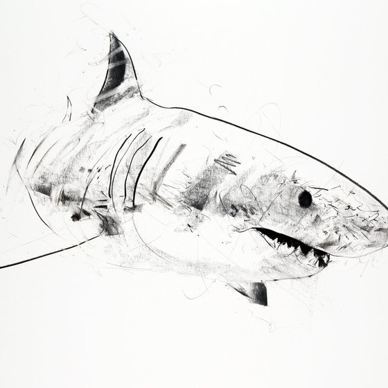 <span class=%22title%22>Great White I<span class=%22title_comma%22>, </span></span><span class=%22year%22>2013</span>