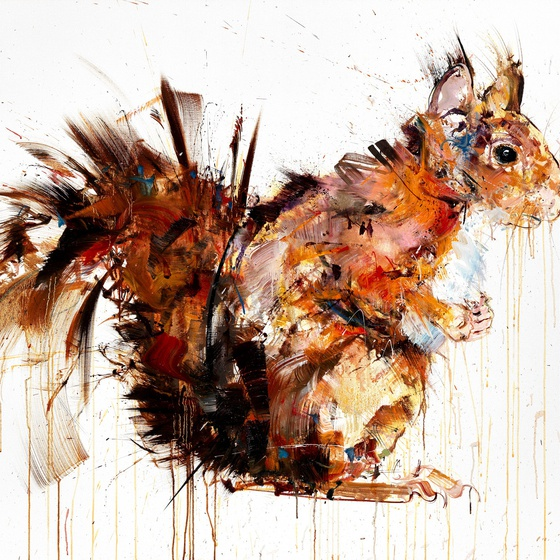Red Squirrel, 2014