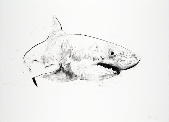 Great White III